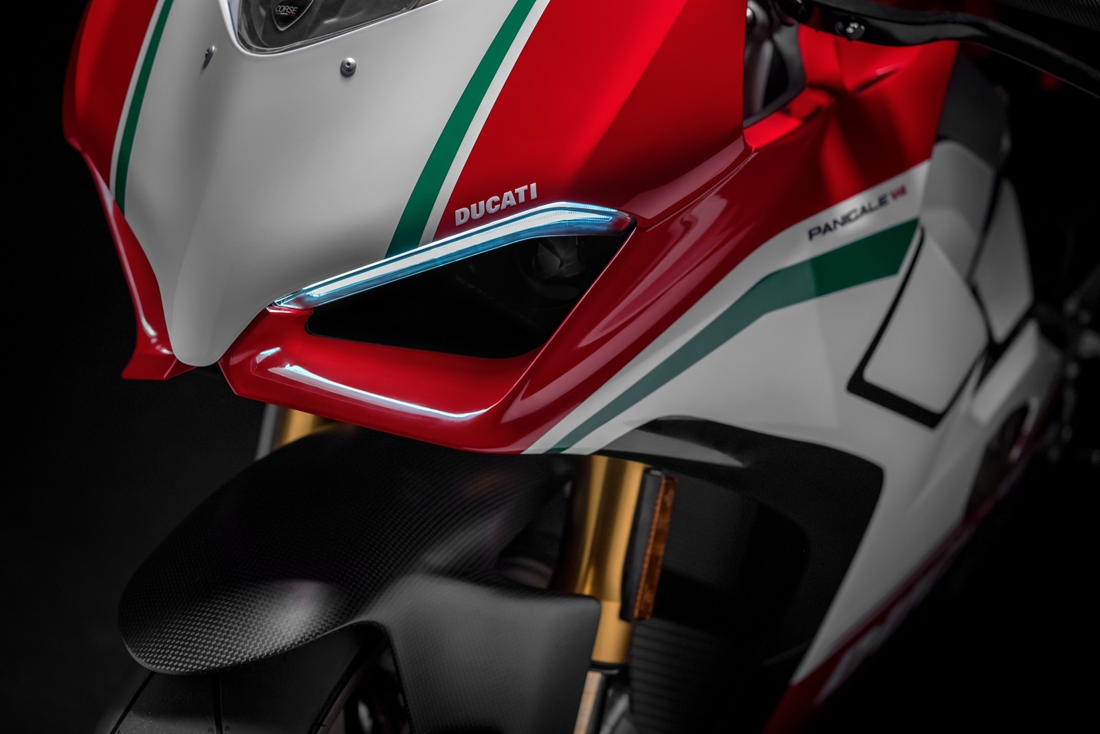 Foto de Ducati Panigale V4 2018 (46/52)