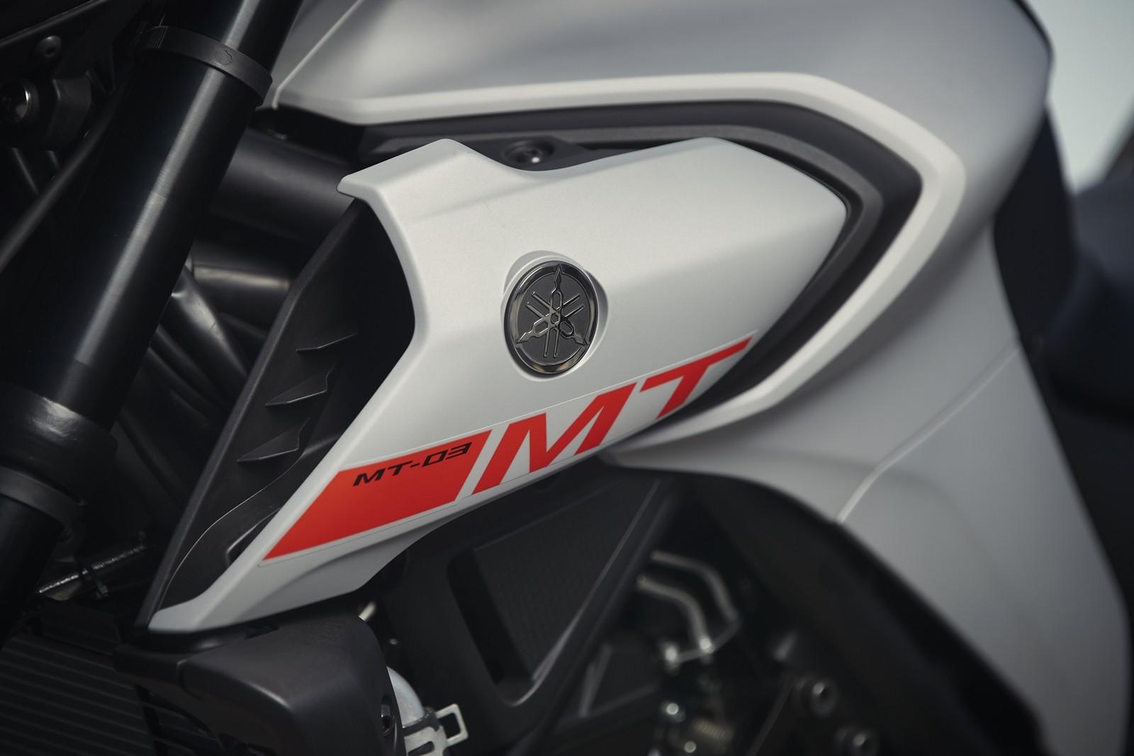 Foto de Yamaha MT-03 2020, prueba (19/33)