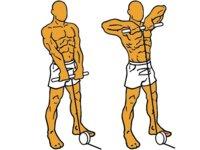 Guía para principiantes (L): Remo al cuello con polea baja