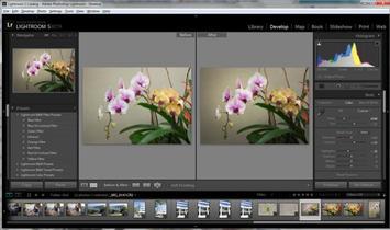 Adobe ha añadido perfiles de color para las cámaras Olympus a Camera RAW y Lightroom