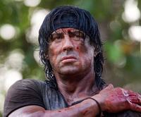 No habrá paz para Sylvester Stallone y tal