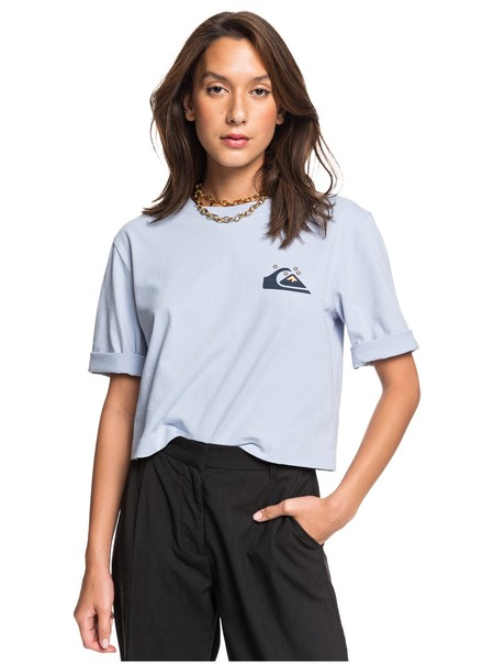 Quiksilver Womens Camiseta Crop Holgada Con Manga Media Para Mujer