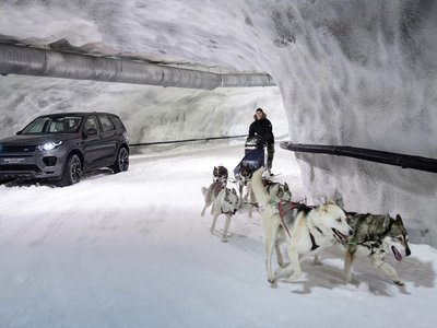 ¿Quién va más rápido? 240 caballos jalando un Land Rover Discovery o 6 perros en trineo?