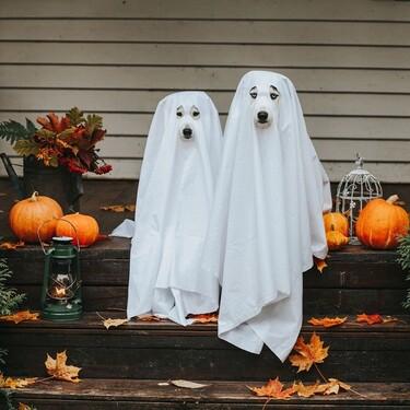 Las ideas de Halloween más buscadas en Pinterest