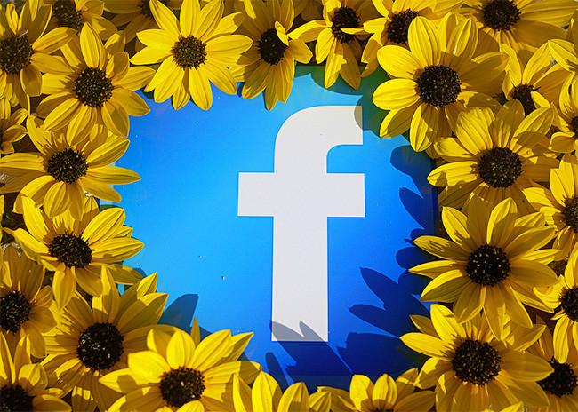Facebook Flores