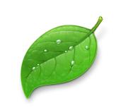 Coda se actualiza a la versión 1.1