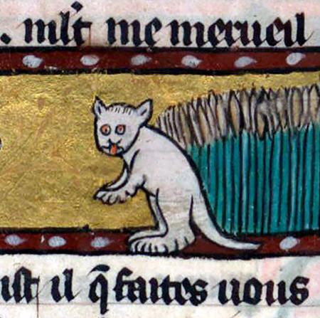 Ugly Medieval Cats Art 102 5aafafa8c8e2c 700