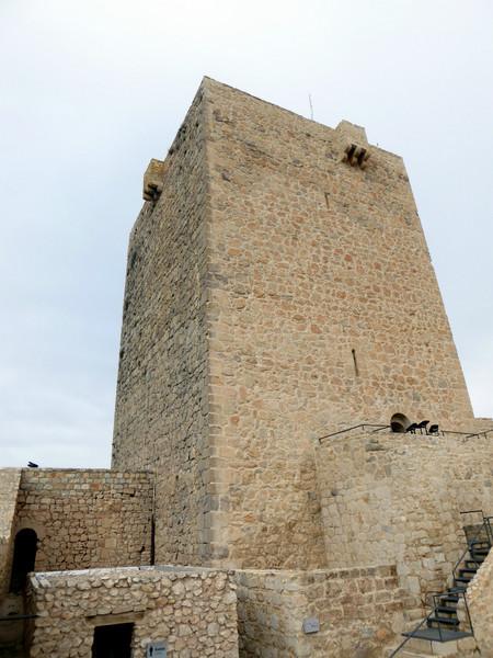 Torre