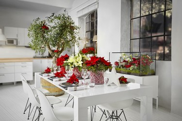 Cinco ideas para decorar la mesa de Navidad con poinsettias