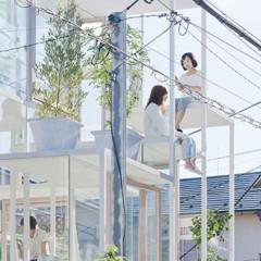 Foto 1 de 14 de la galería casas-poco-convencionales-una-casa-completamente-transparente en Decoesfera