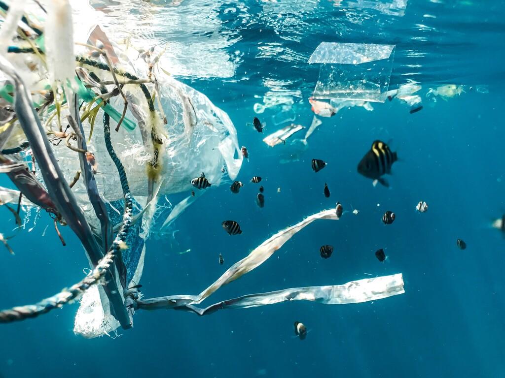 Eliminar el plástico de nuestras vidas hoy por hoy es imposible: estos investigadores buscan una manera de hacerlo menos malo con el medio ambiente