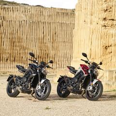 Foto 4 de 18 de la galería mv-agusta-brutale-800-rr-2021 en Motorpasion Moto