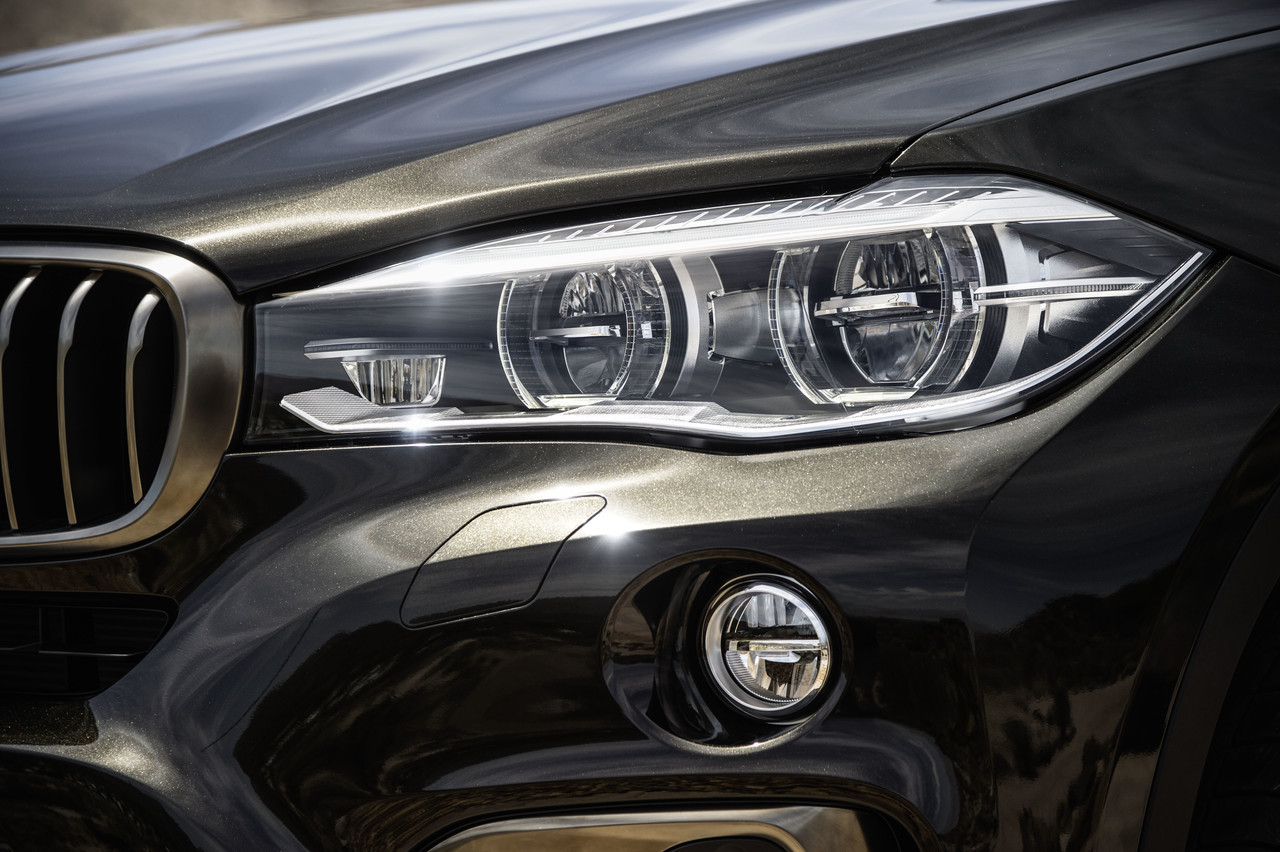 Foto de BMW X6 2014 (81/96)