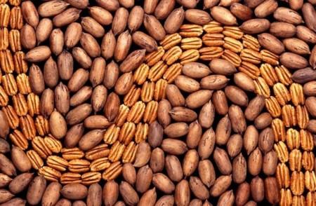 La nuez americana, mi último descubrimiento en frutos secos