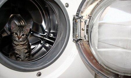 Ahorra con cada lavado, ¡domestica la lavadora!