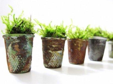 Jardines en miniatura, ¡las macetas son dedales!