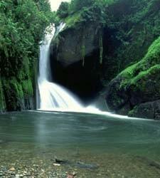 Los cinco mejores destinos del ecoturismo