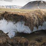 La caja de Pandora de virus congelada durante millones de años que hay en el Ártico y es que es mejor que no abramos nunca