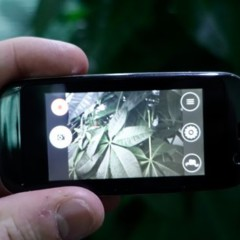 Foto 6 de 16 de la galería micro-smartphone-de-elephone en Xataka Android