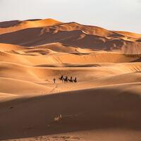 Es tentador llenar el Sáhara de paneles solares. La consecuencia inesperada sería reverdecerlo