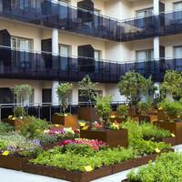 Aprende a crear un huerto urbano