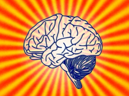 Brain 78440 960 720