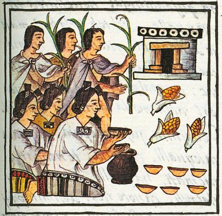 Fiesta del maíz