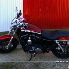 Foto 30 de 65 de la galería harley-davidson-xr-1200ca-custom-limited en Motorpasion Moto