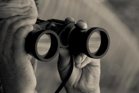 ¿A más contenido publicado en las redes sociales, más visibilidad?