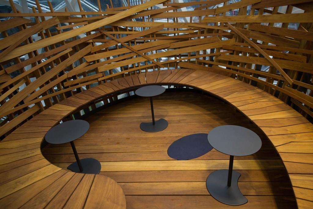 The Spheres Amazon 11