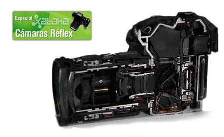 Partes de un cámara réflex digital (III)