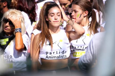 Qué piensa Pacma y qué dice en su programa electoral: más allá de la prohibición de los toros y la caza