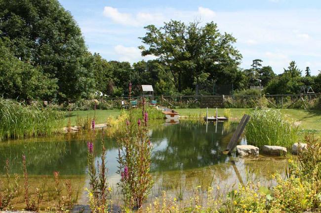 piscina ecológica - 3