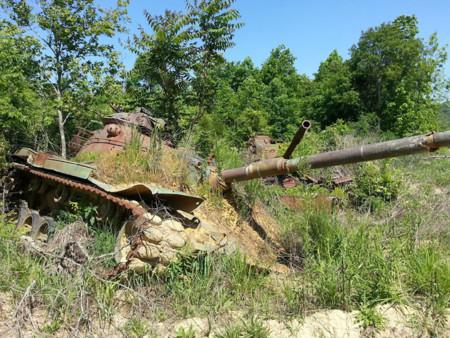 Tanques Naturaleza 7