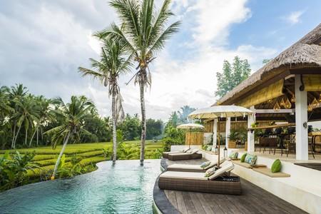 Arquitectura tropical y estilo contemporáneo unidos en el hotel Calma Ubud en el corazón de Bali