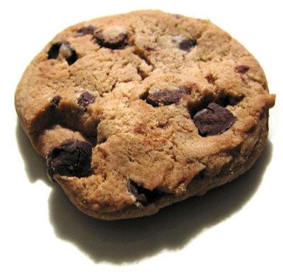La regla de los cinco segundos cuando se cae un alimento, es un mito