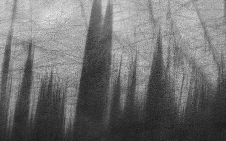 Sombras Hemisferio Sur