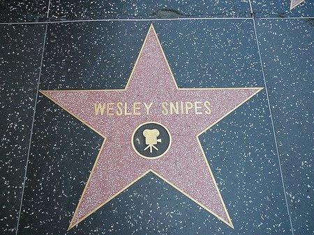 Wesley Snipes irá a la cárcel, y no es el papel de su nueva película