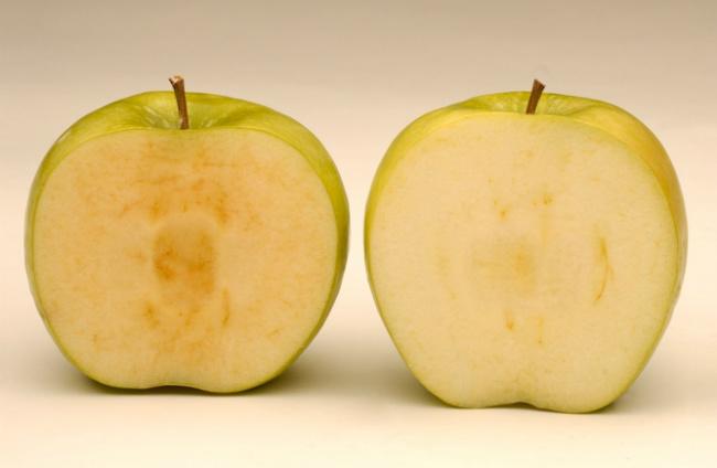 Manzanas que no se oxidan al cortarlas
