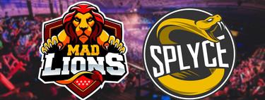 MAD Lions está a punto de fusionarse con Splyce Vipers y su puesto en SLO lo ocupará Team Queso, según varias fuentes