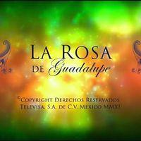 Los adolescentes en México pasan más de 4 horas frente al televisor; 'La Rosa de Guadalupe' entre sus programas favoritos: IFT