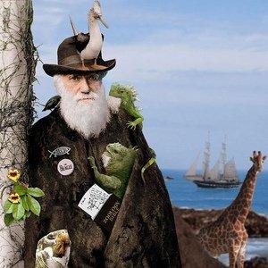 ¿La evolución es una teoría o es un hecho? (I)