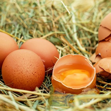 7 mitos que han hecho que dejes de comer huevos (sin razón)