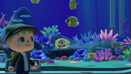 Todos los peces en Animal Crossing New Horizons: precio y cómo conseguirlos
