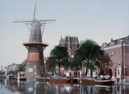 Un Molino En Rotterdam