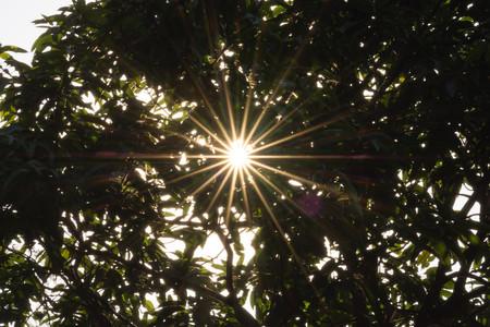 Incluir Sol En Fotos No Es Mala Idea 03
