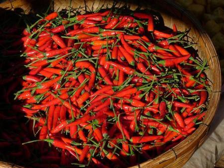 El consumo de chile puede beneficiar tu salud