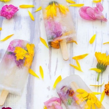 Paletas heladas de flor de cempasúchil. Receta fácil