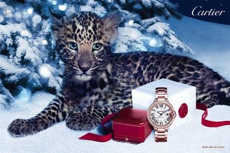 Cartier presenta Winter Tale, su campaña navideña
