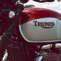 Foto 19 de 27 de la galería triumph-bonneville-t120-bud-ekins-2020 en Motorpasion Moto